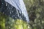 Bol yağışlı bir pazar!..