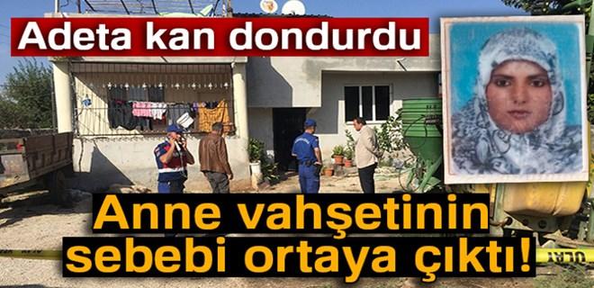 Türkiye'yi sarsan vahşette kan donduran ifadeler!