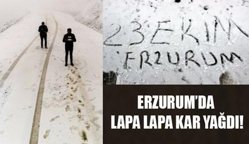 Erzurum'da lapa lapa kar ve tipi!