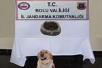 Bolu'da kaçak sigara ve uyuşturucu operasyonu