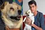 Genç Yasin'in tek dostu görme engelli köpeği