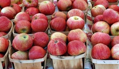 Parkinsona günde 1 elma!