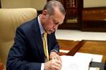 Cumhurbaşkanı Erdoğan'ın 41 il mesaisi
