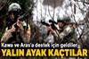 Terör örgütü PKK'nın Karadeniz yapılanmasına ilişkin operasyonlar sürüyor.