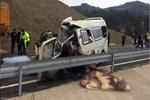 Kahramanmaraş'ta acı kaza!