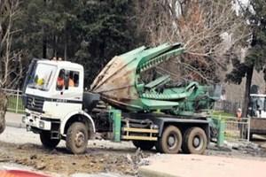 Maçka Parkı'nın ağaçları taşınıyor