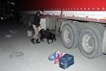 Erzincan'da 7 milyon TL'lik uyuşturucu ele geçirildi