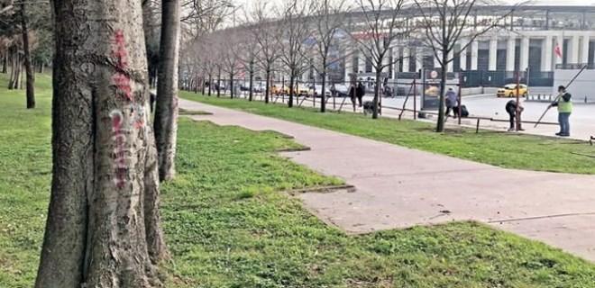 Maçka Parkı'ndaki ağaçlar Sarıyer'e taşınacak