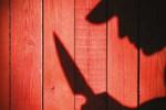 Otel cinayetine tahrik indirimi