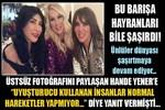 Hande Yener ve Seren Serengil'in şaşırtan barışması!