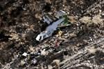 İran'daki uçak kazasının sürpriz bir tanığı ortaya çıktı!