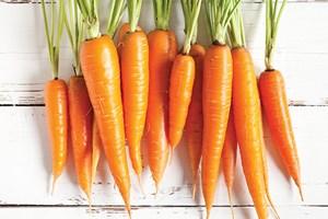 Mevsim geçişlerinde hangi besinlerden destek almalıyız?