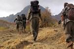 PKK 'beyinsiz' kaldı!..