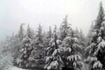 Meteoroloji'den kar uyarısı geldi!