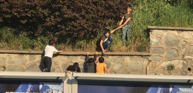 Şişli'de çocukların tehlikeli erik oyunu
