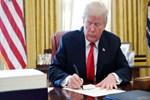 Trump imzaladı, Amerikalılara yasaklandı!