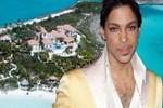 Prince'ın son yadigarı da satılıyor
