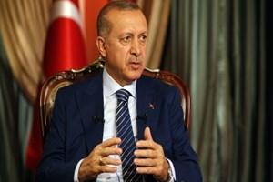 Cumhurbaşkanı Erdoğan'dan hayvan haklarıyla ilgili talimat