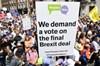 Birleşik Krallık'ın Avrupa Birliğinden ayrılma kararı olan Brexit'i protesto eden on binlerce kişi...