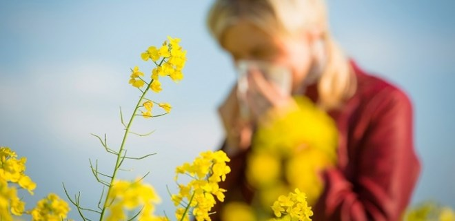 Polen alerjisi uyarısı!
