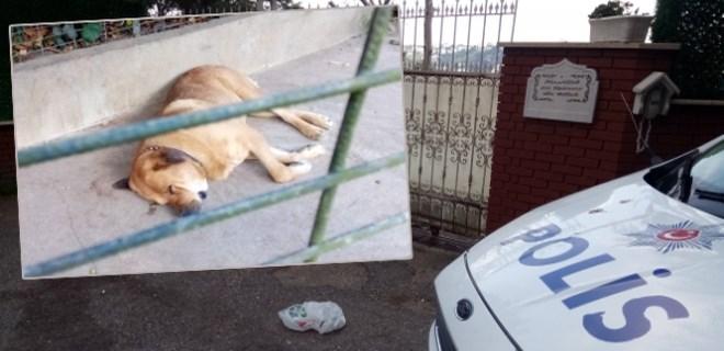 Adnan Oktar'ın mühürlenen villasında polis nöbet tutuyor
