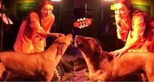 Leman Sam sokak köpeğiyle düet yaptı