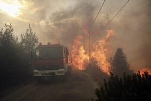 Yunanistan'daki yangın felaketinde ölü sayısı artıyor