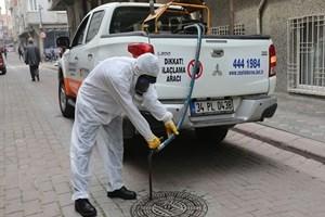 İstanbul'da sivrisinek istilası!