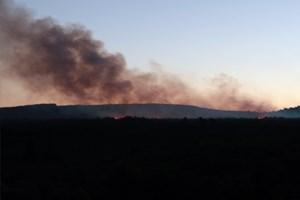 Aydos Ormanı'nda yangın!