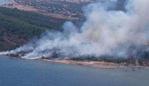 Cunda Adasında orman yangını