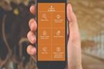 'İBB Kurban' mobil uygulaması hizmete girdi