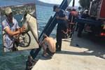 Sarıyer'de bir kişi atla beraber denize düştü