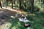 Aydos Ormanı'nı çöplüğe çevirdiler!