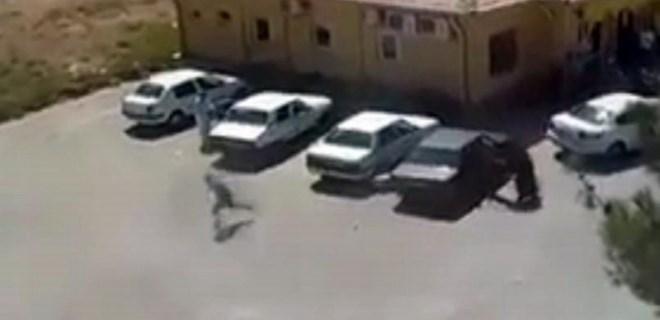 Şanlıurfa'da 'kan davası' cinayeti