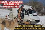 Sokak hayvanlarını beslemek için İstanbul'daki dairesini sattı