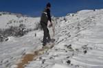 Elazığ'da yaban hayvanları için 2 ton yem bırakıldı