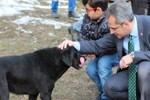 Okul harçlıklarını sokak hayvanlarına ayırdılar