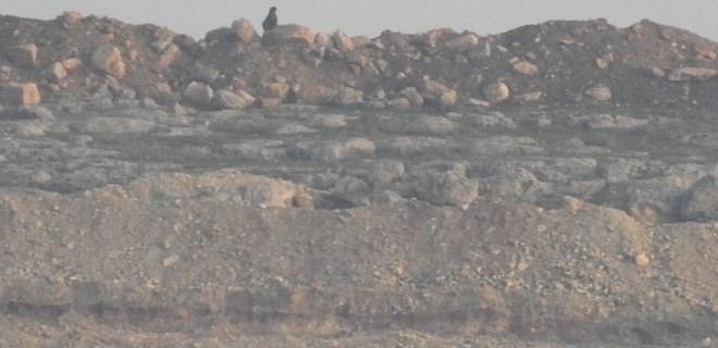 YPG'li teröristlerin hendek nöbeti