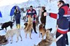 Ankara Büyükşehir Belediyesi Sağlık İşleri Daire Başkanlığı, soğuk hava şartlarının etkisini...