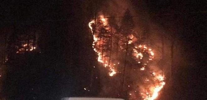 Kış ortasında orman yangını şoku