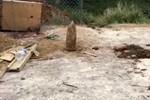 Büyükbakkalköy'de bir kazıda top mermisi bulundu