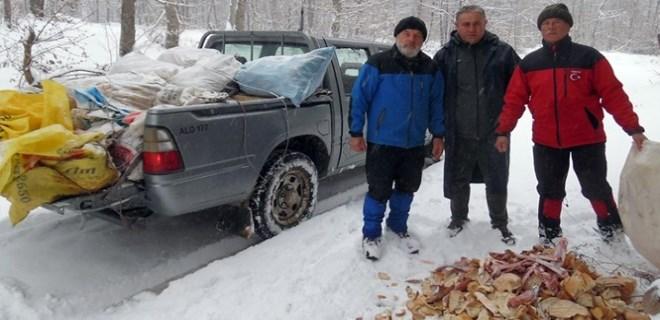 Sokak hayvanları için 7 yıldır ekmek topluyorlar