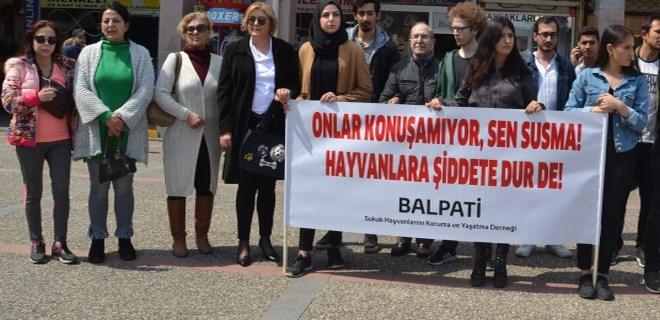 Ankara'daki köpek katliamı Balıkesir'de protesto edildi