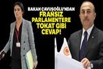 Bakan Çavuşoğlu'ndan, Fransız parlamentere tokat gibi cevap!