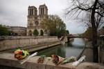 Notre Dame için toplanan bağışlar 700 milyon euroya ulaştı