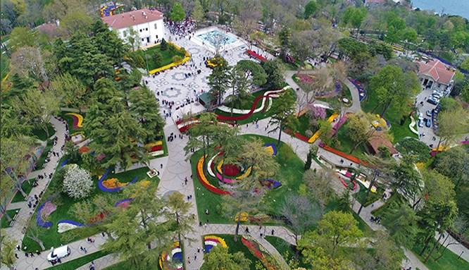 İstanbul'u 20 milyon lale renklendiriyor