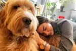 Demet Özdemir sevimli köpeğiyle poz verdi