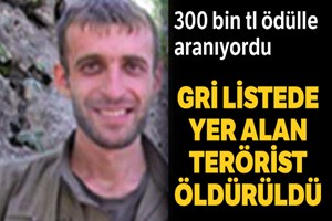 300 bin TL ödülle aranan terörist öldürüldü