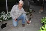 Kedisi Minnoş'u bulana en organik ödül